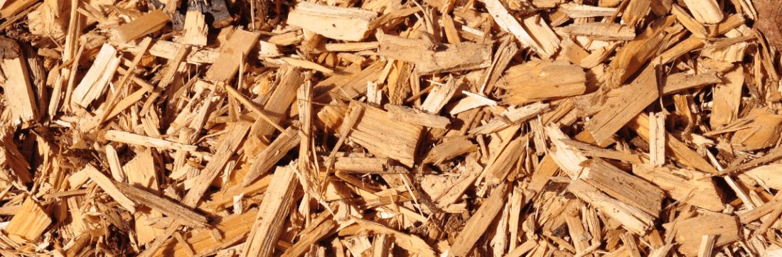 Studiegroep bio-energie biomassa